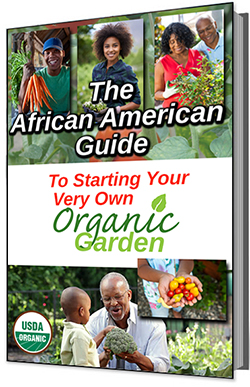 african_american_guide_organic_garden_bookcover-SMALL